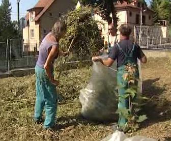 Bezdomovci se zapojili do projektu Zpátky do práce