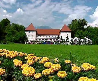 Slovinské Brdo