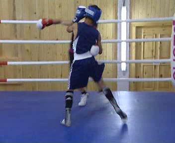 Mladí boxeři
