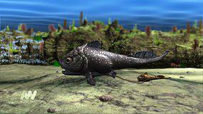 Pancířnatá ryba s mládětem