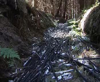 Šumavský potok plný odpadu z kabelů