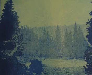 Šumava umírající a romantická