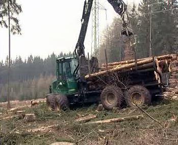 Práce v lese