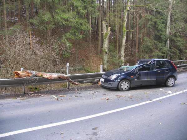 Strom spadl na projíždějící ford