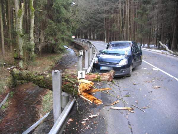 Spadlý strom poškodil projíždějící auto