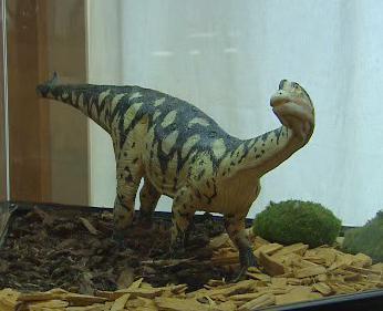 Dinosauři z Argentiny