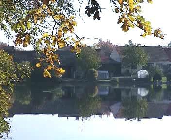 Rybník na Českobudějovicku