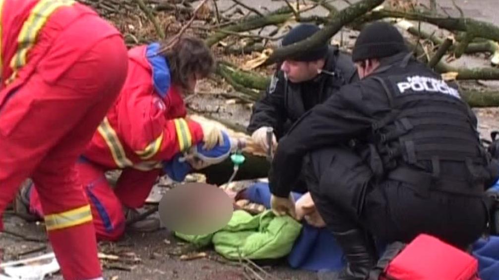 Záchranáři zasahují při pádu stromu 22. ledna 2009 ve Zlíně