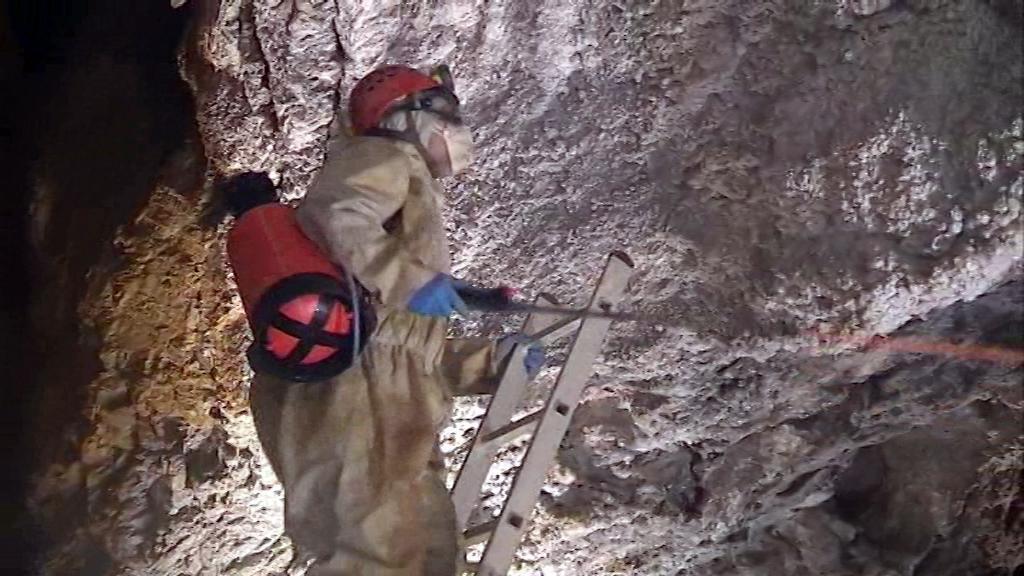 Zbrašovské jeskyně ohrožují plísně