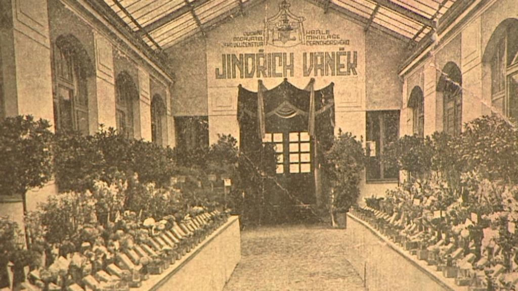 Dobový snímek dvora