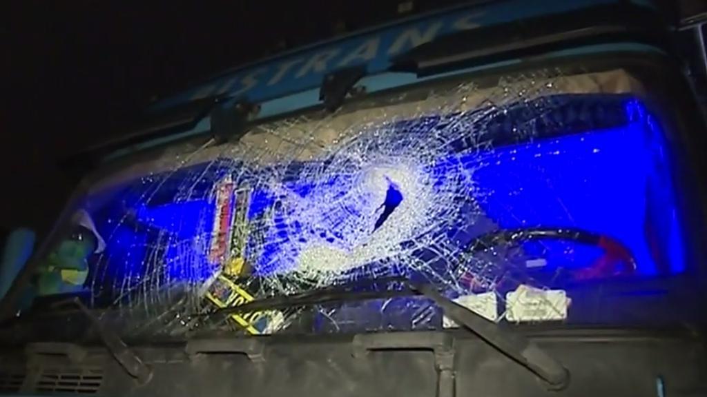 Pachatelé házeli dřevo na auta
