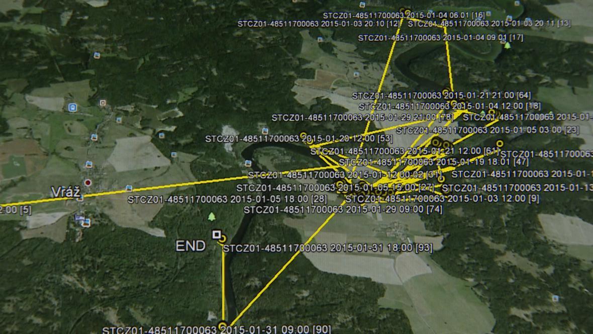 Lednový pohyb orla Viktora - záznam podle vysílačky
