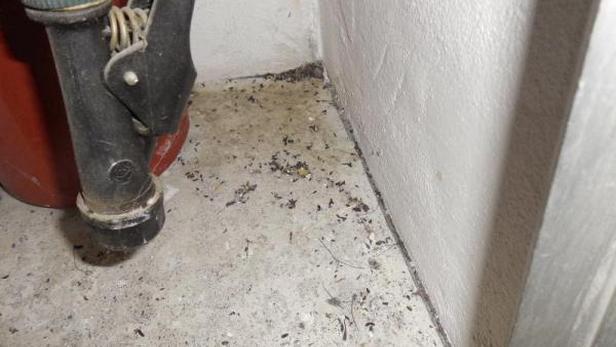 Znečištění zjištěné SZPI v podnicích v Jihlavě a Rudné