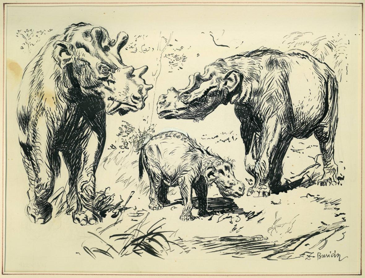 Kresba Zdeňka Buriana