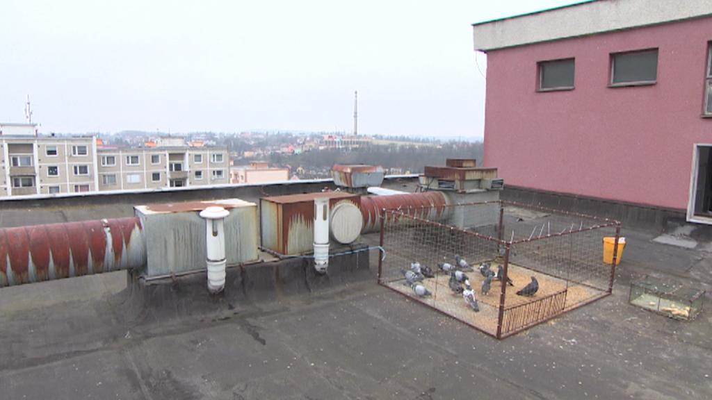 Klec na střeše panelového domu
