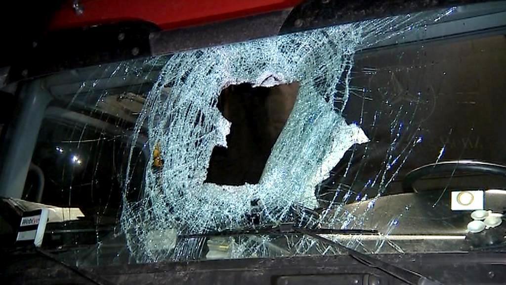 Auto poškozené svrženým polenem