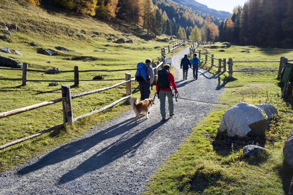Procházka švýcarskými Alpami
