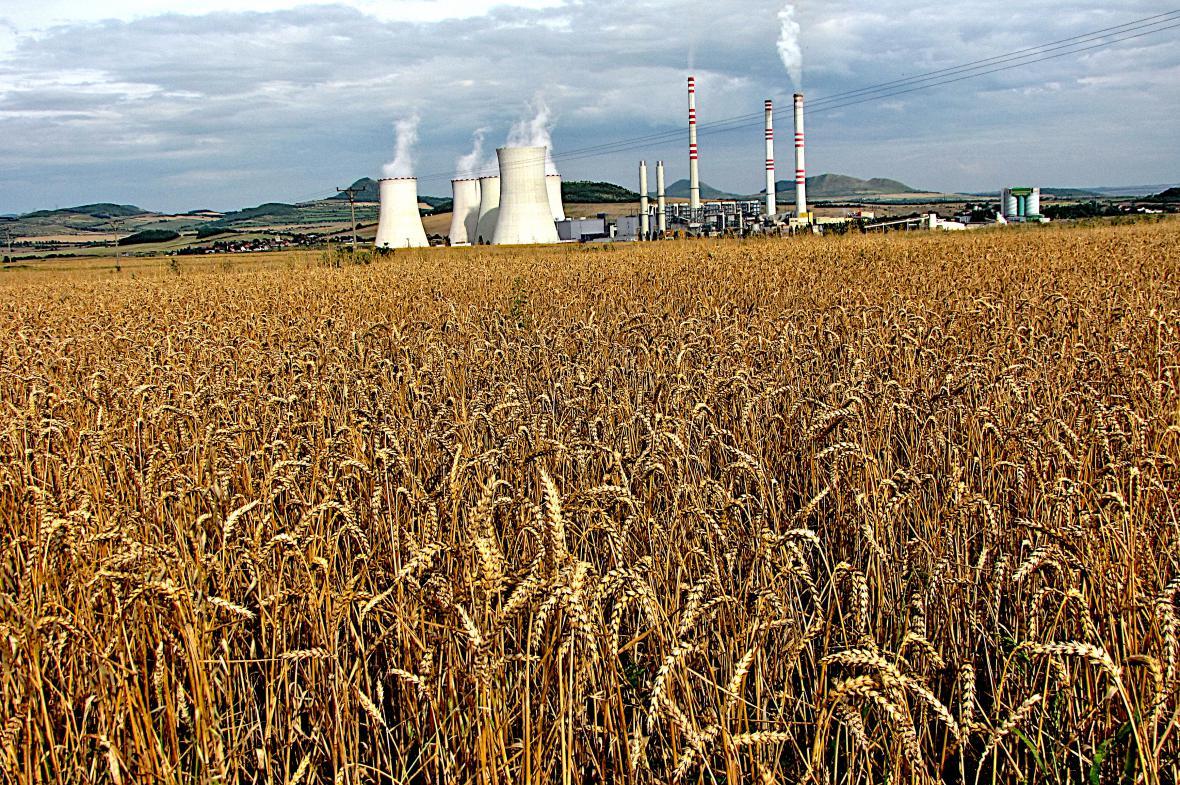 Na stejném místě dnes roste pšenice