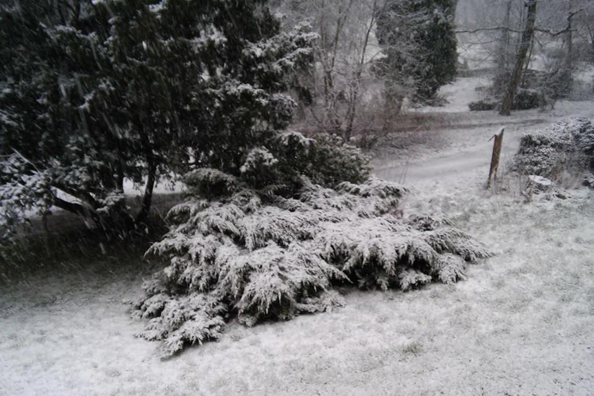 Ranní sníh v Českém Dubu