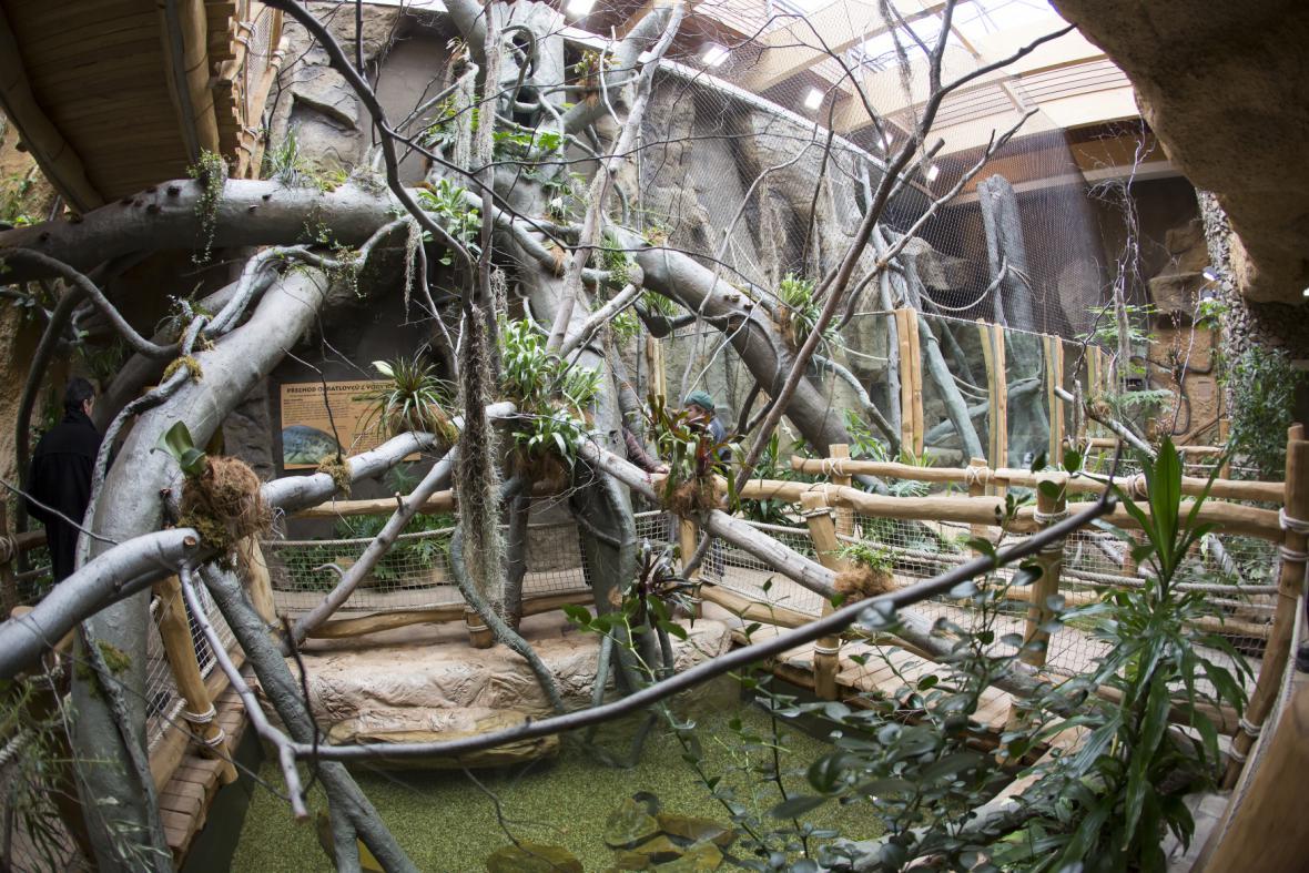 Pavilon Evoluce v ostravské zoo