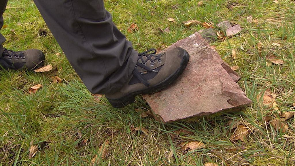 Kámen odpadlý z hradu Litice