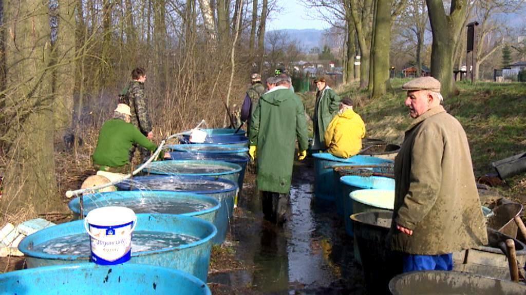 Rybáři před zahájením pstruhové sezony