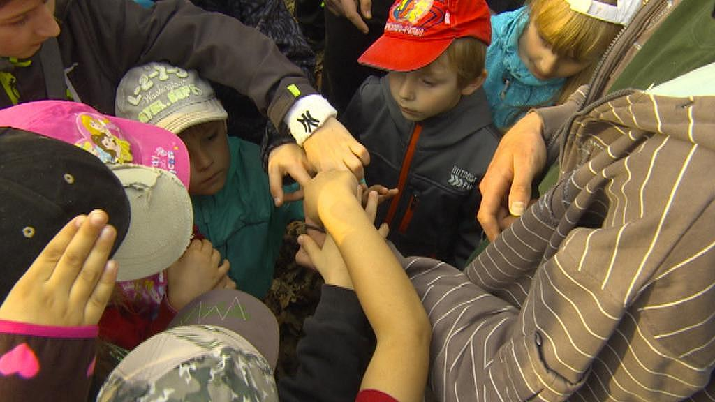 Vypouštění netopýrů se účastnily i děti