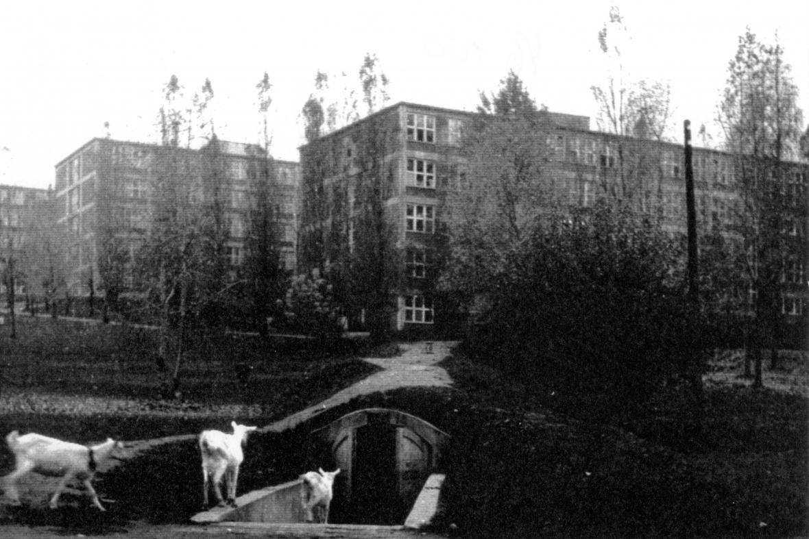 Vchod do společného protiletadlového krytu u škol ve Zlíně (1945)