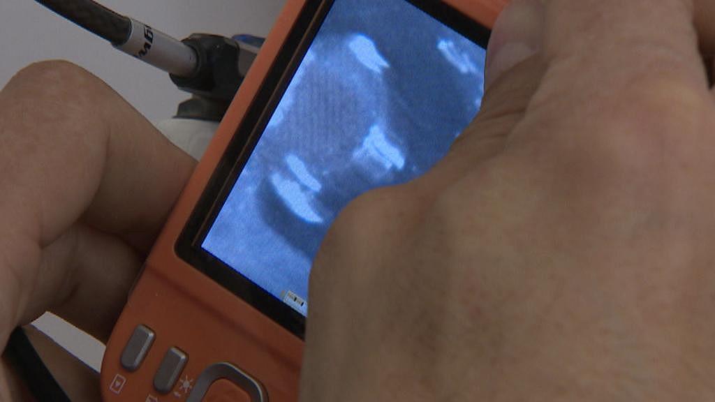 Mikrotečka je vidět pod UV lampou