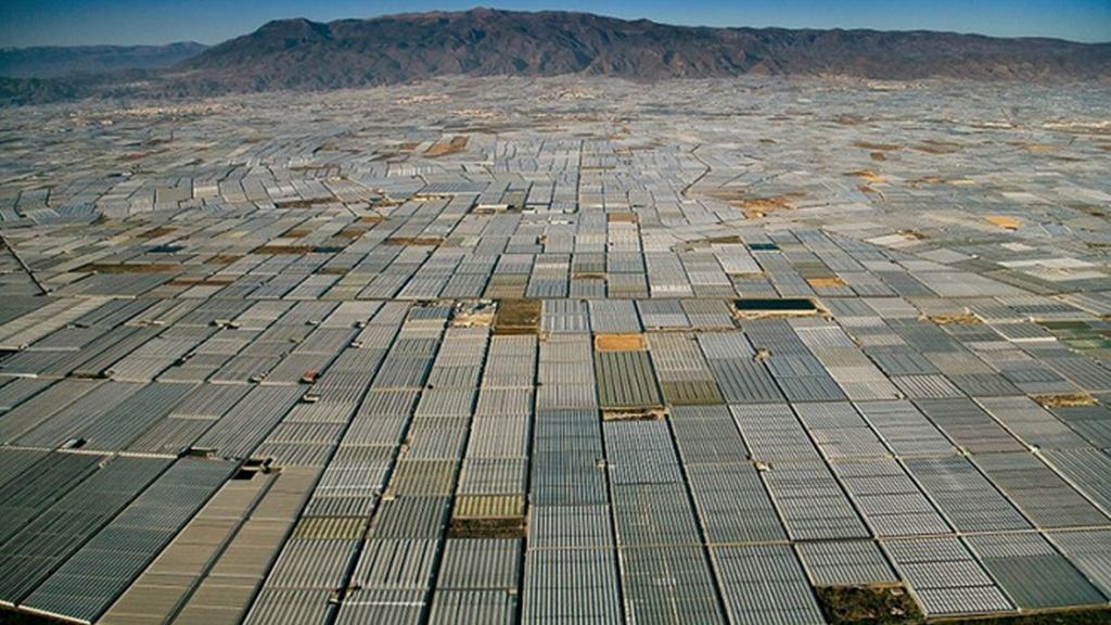Půda v jižním Španělsku se schovává pod nekonečnou plochu skleníků