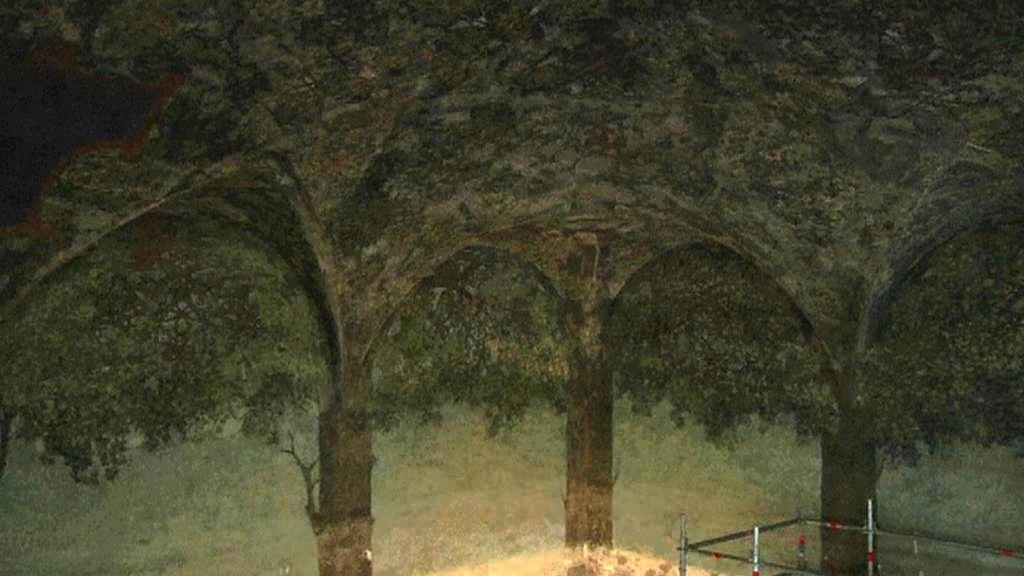Odkrytá část Da Vinciho fresek v milánském hradu
