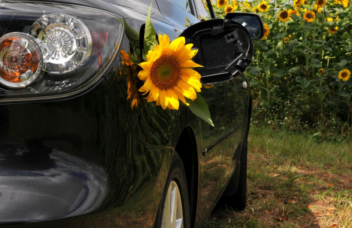 Auto na biopalivo