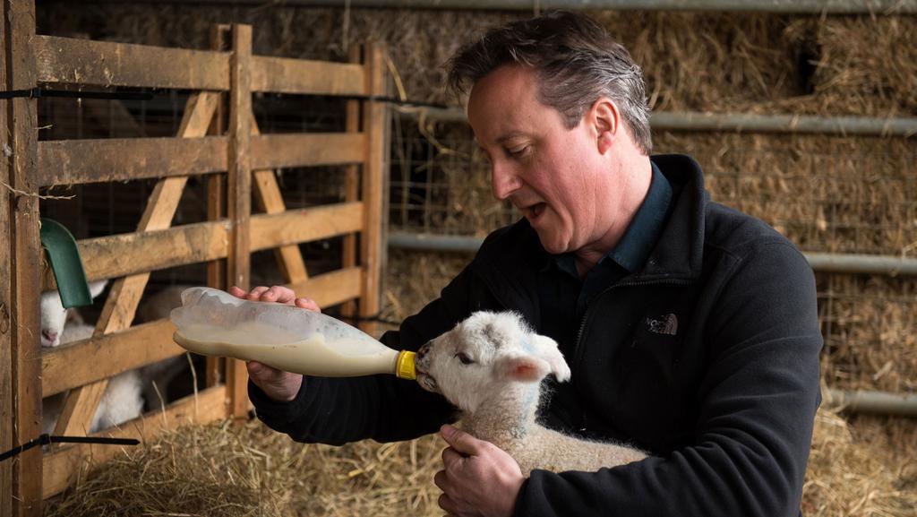 Volební lídři si během kampaně vyzkouší ledacos...