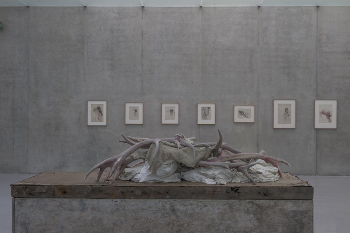 Berlinde De Bruyckere / Balzamovač