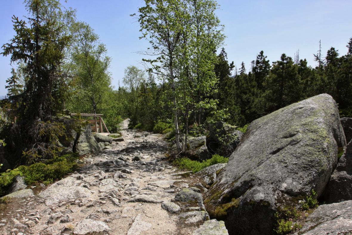 Cesta k Plešnému jezeru zvaná Kamenné moře