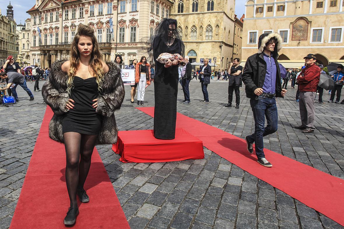 Krvavá módní přehlídka aktivistů ze spolku OBRAZ