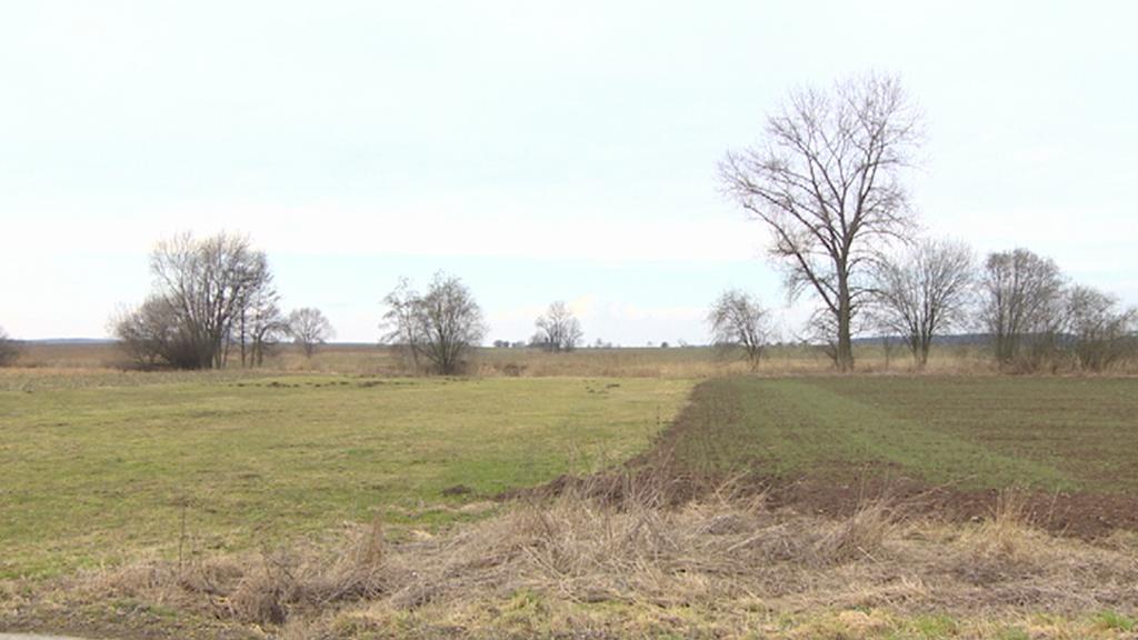 Pozemky v části Obora obce Chomutice