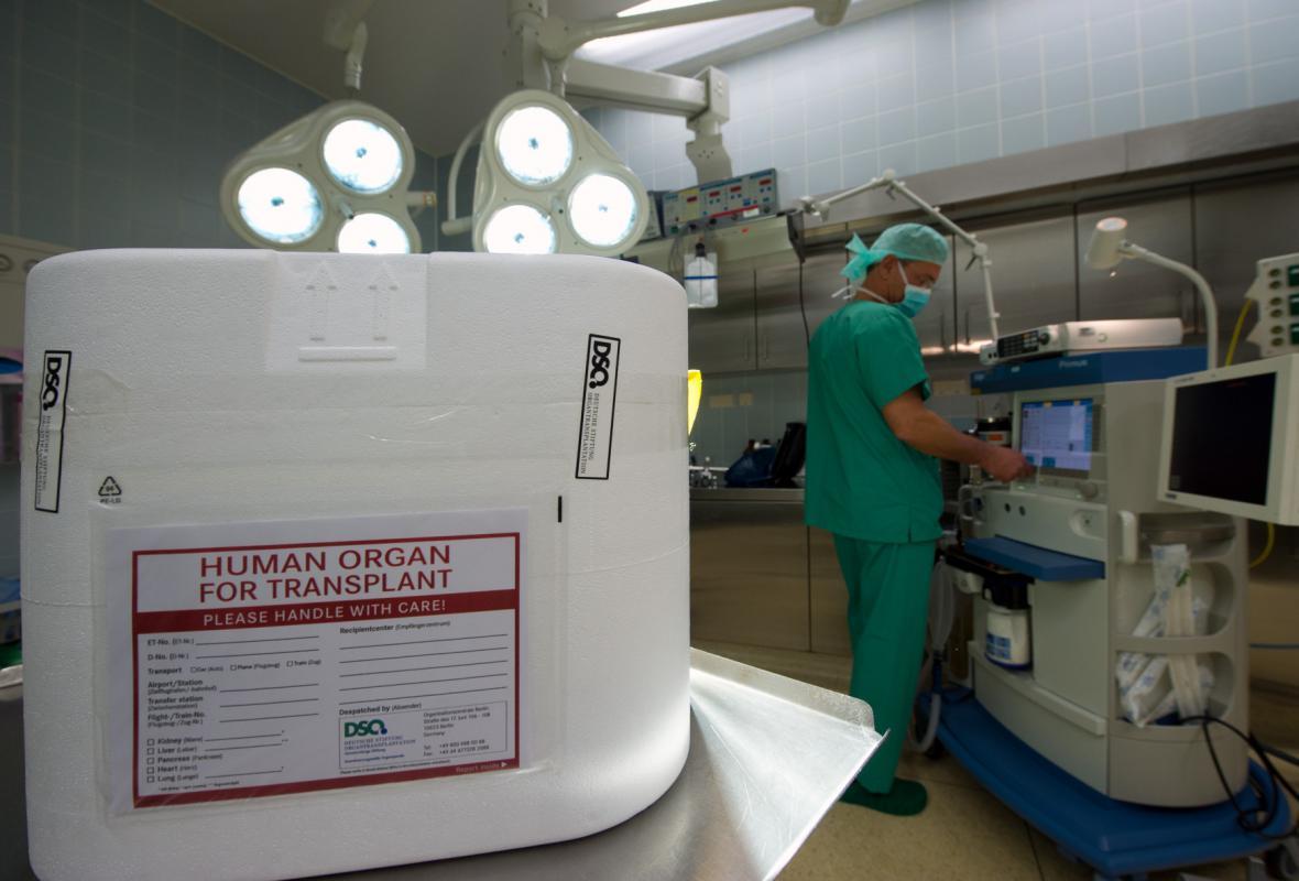Transplantace orgánů