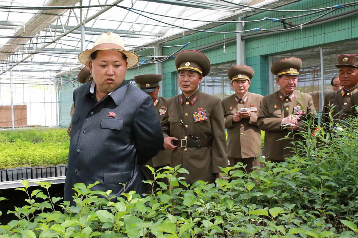 Kim Čong-un kouká na pučící rostlinstvo ve sklenících