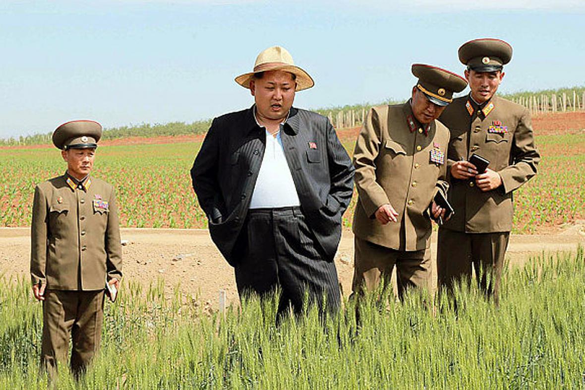 Kim Čong-un kouká, jak zlátnou klasy