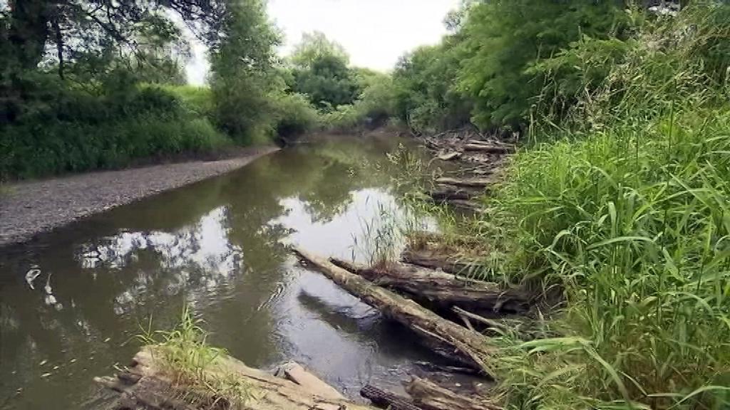 Odra odkryla zbytky 800 let staré dřevěné cesty