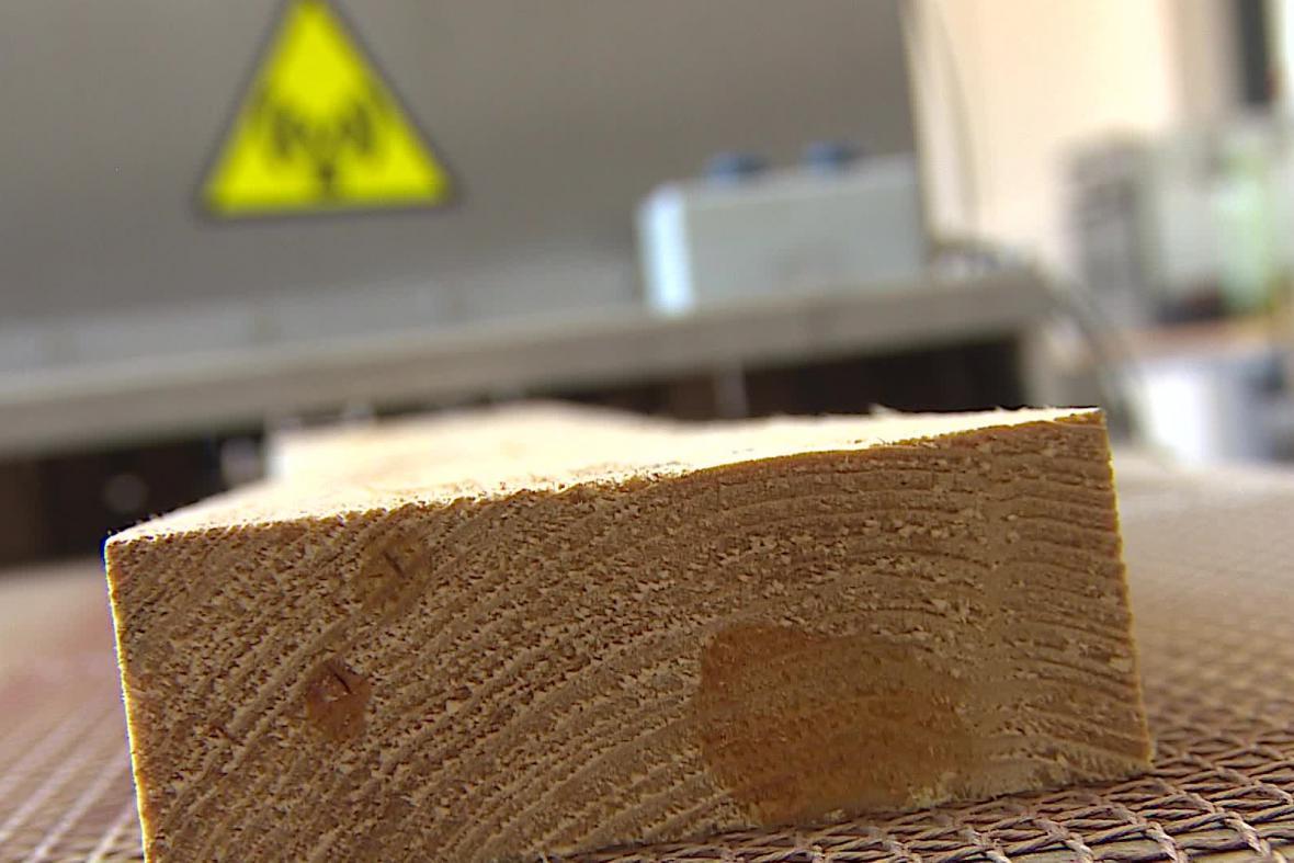 Laboratoř Mendelovy univerzity na zkoumání dřeva