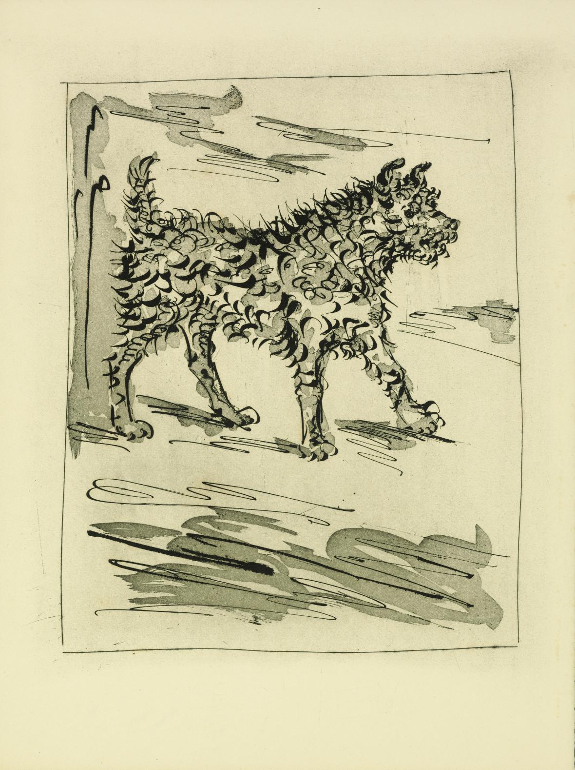 Pablo Picasso / Pes, 1936
