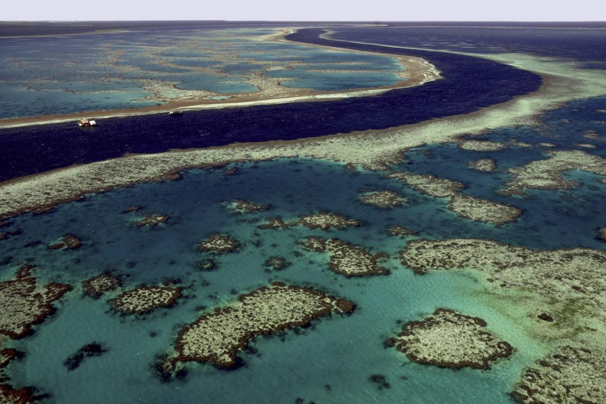 Velký korálový útes