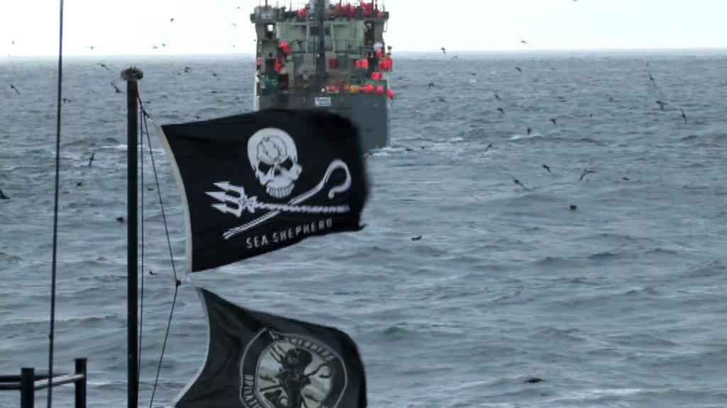 Sea Shepherd pronásleduje loď Thunder