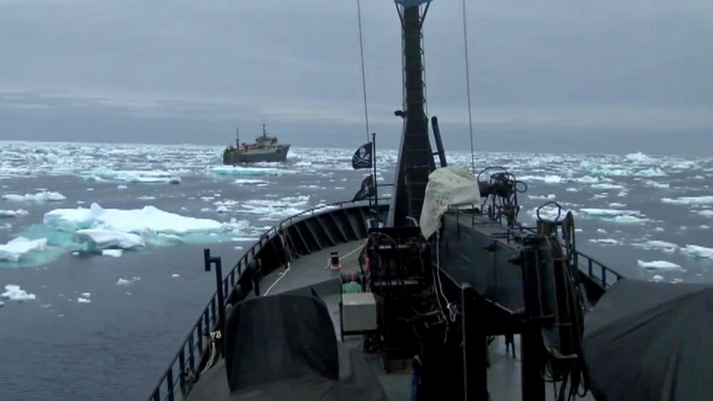 Sea Shepherd pronásleduje loď Thunder