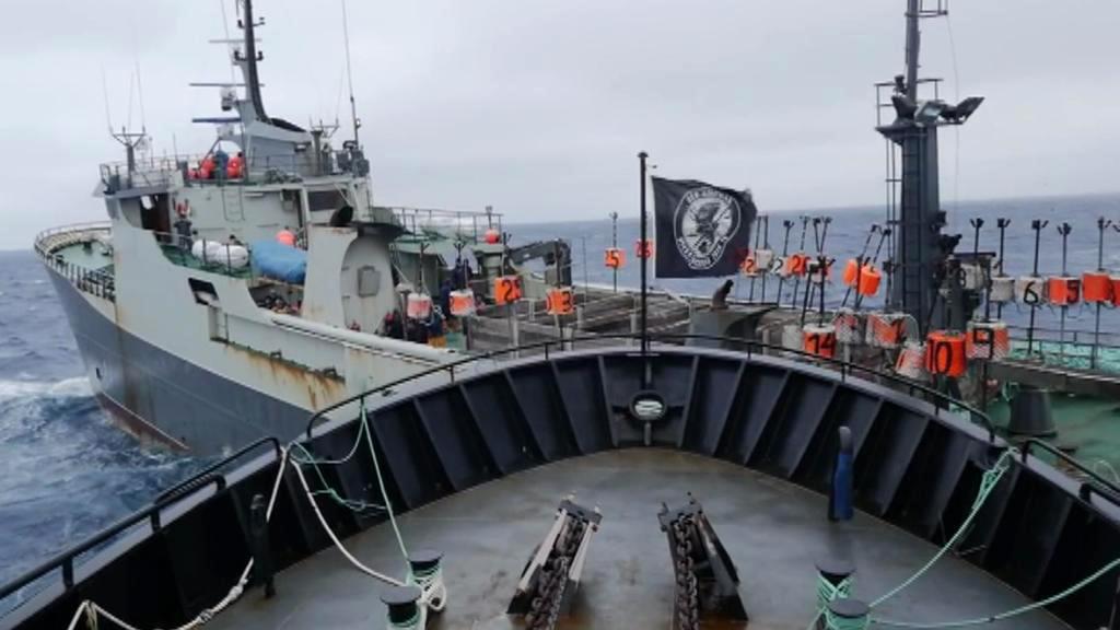 Sea Shepherd a Thunder se jen těsně vyhnuly srážce