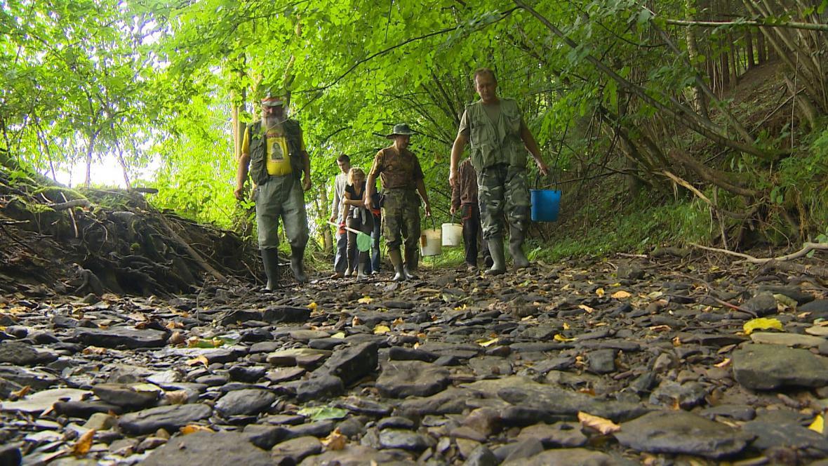 Aktivisté zachraňovali raky z vyschlého Janovského potoka