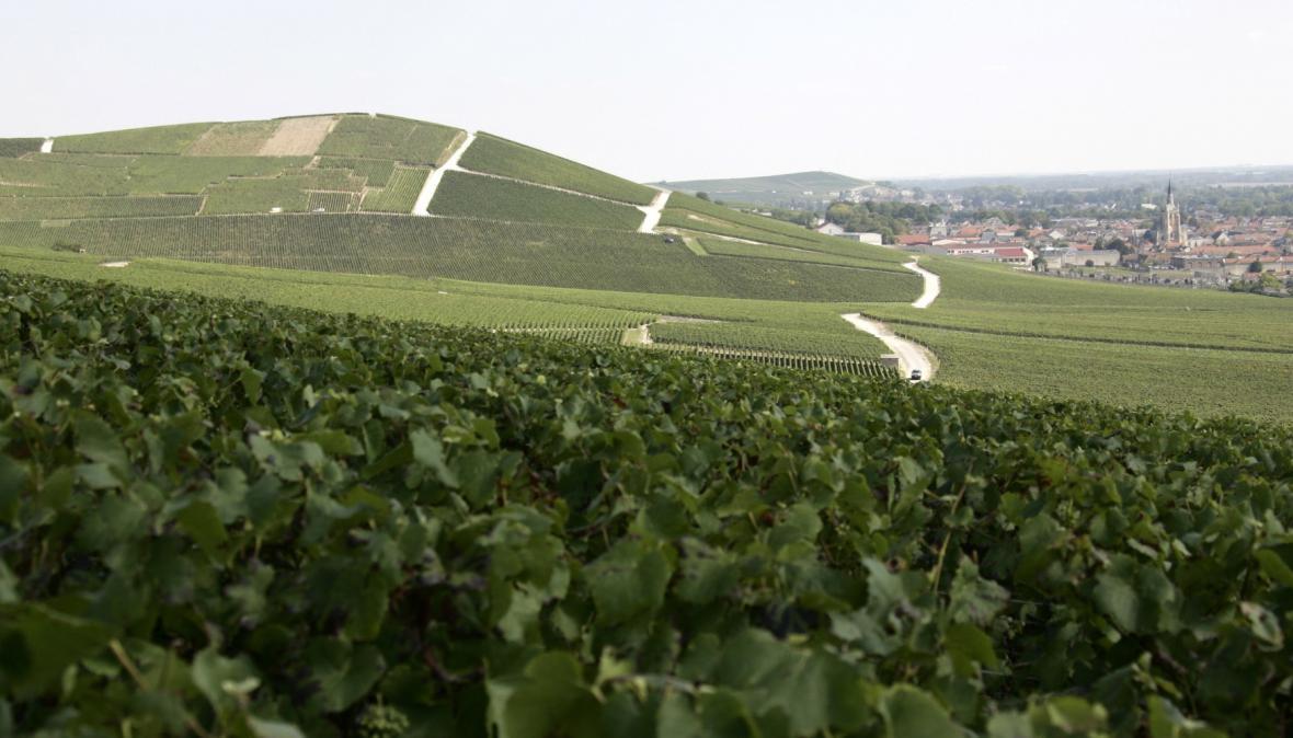 Vinařský kraj Champagne ve Francii