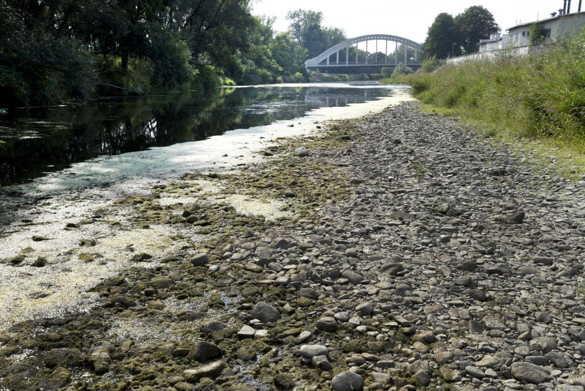 Vysýchající řeka Olše